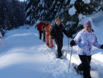 walking-winter-ways-wildschoenau-tyrol-austria